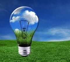lightbulb hovering over a field of grass