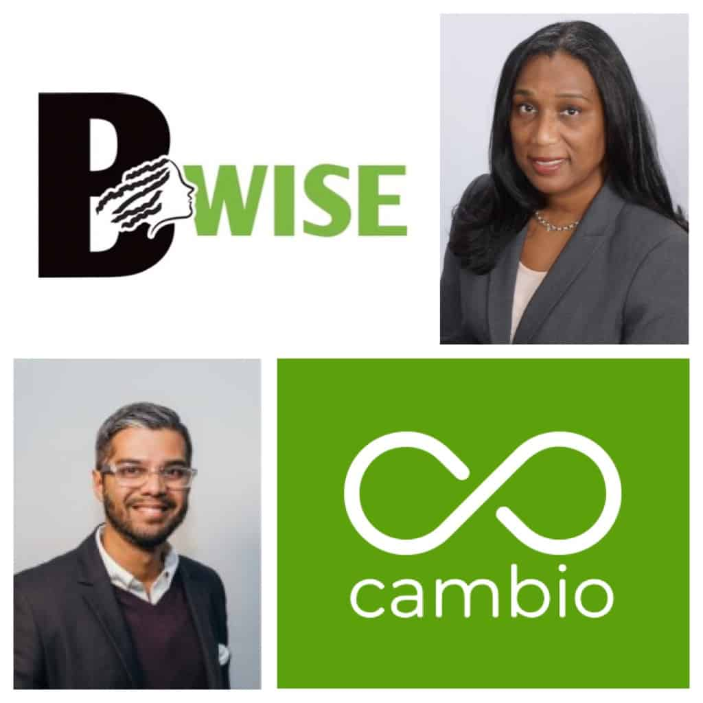 BWISE and CAMBIO